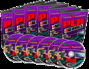 PLR For Newbies Videos (MRR)