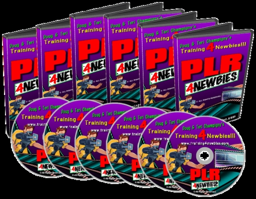 Product picture PLR For Newbies Videos (MRR)